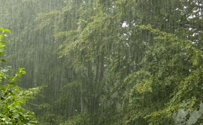 Rain in South Guadalcanal. Photo: okwxlab blog.