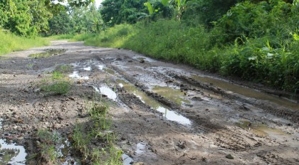 A bad stretch of road in Guadalcanal. Photo credit: SIBC.