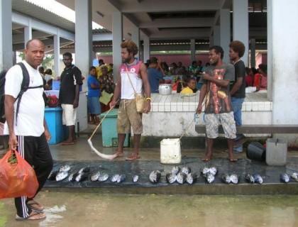 Fish sold at the Auki market. Photo credit: Radio New Zealand.