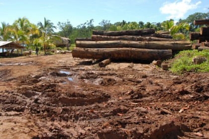 Marovo in the Western Province logged out and idle. Photo credit: Japan Focus.