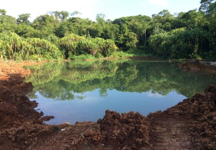 A water table near the Lake Tengano has been cleared by logging activity. Photo credit: SIBC.