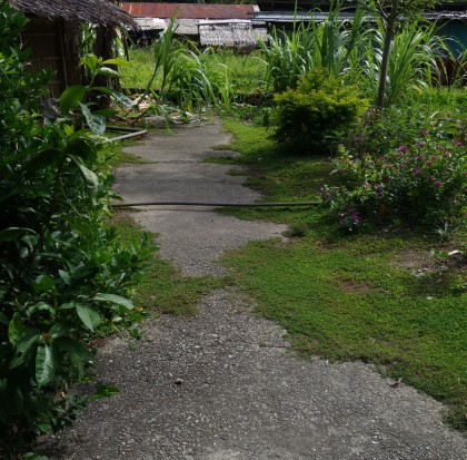 The old cricket pitch during the colonial days at Tulagi, Central Province. Photo credit: SIBC.
