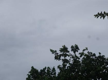 Heavy rain warning for Solomon Islands. Photo credit: SIBC.