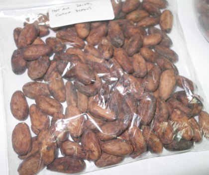 Dried cocoa beans processed at the new laboratory. Photo credit: SIBC.