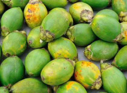 Betel nut fruits. Photo credit: www.travelblog.org