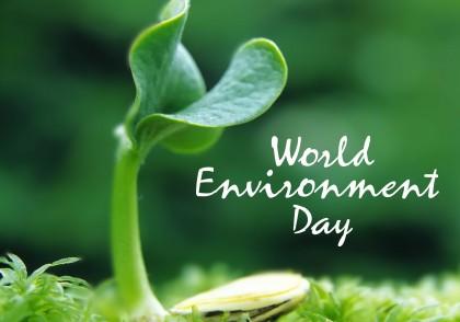 World Environment Day 2015 wallpaper. Photo credit: pchdscreen.com