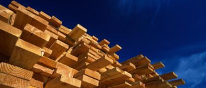 Swan timber. Photo credit: www.nztif.co.nz
