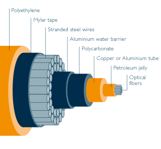 An example of a fibre optic cable. Photo credit: blog.leaseweb.com