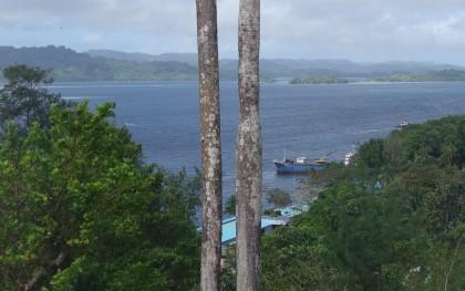 The Tulagi Harbour. Photo credit: SIBC.