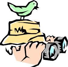 Birdwatcing. Photo credit: datanami.com