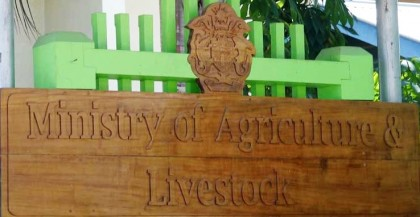 Ministry of Agriculture and Livestock billboard. Photo credit: Island Sun online.