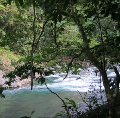 Tina River