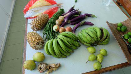 Bad weather set to cause food shortage in Malaita