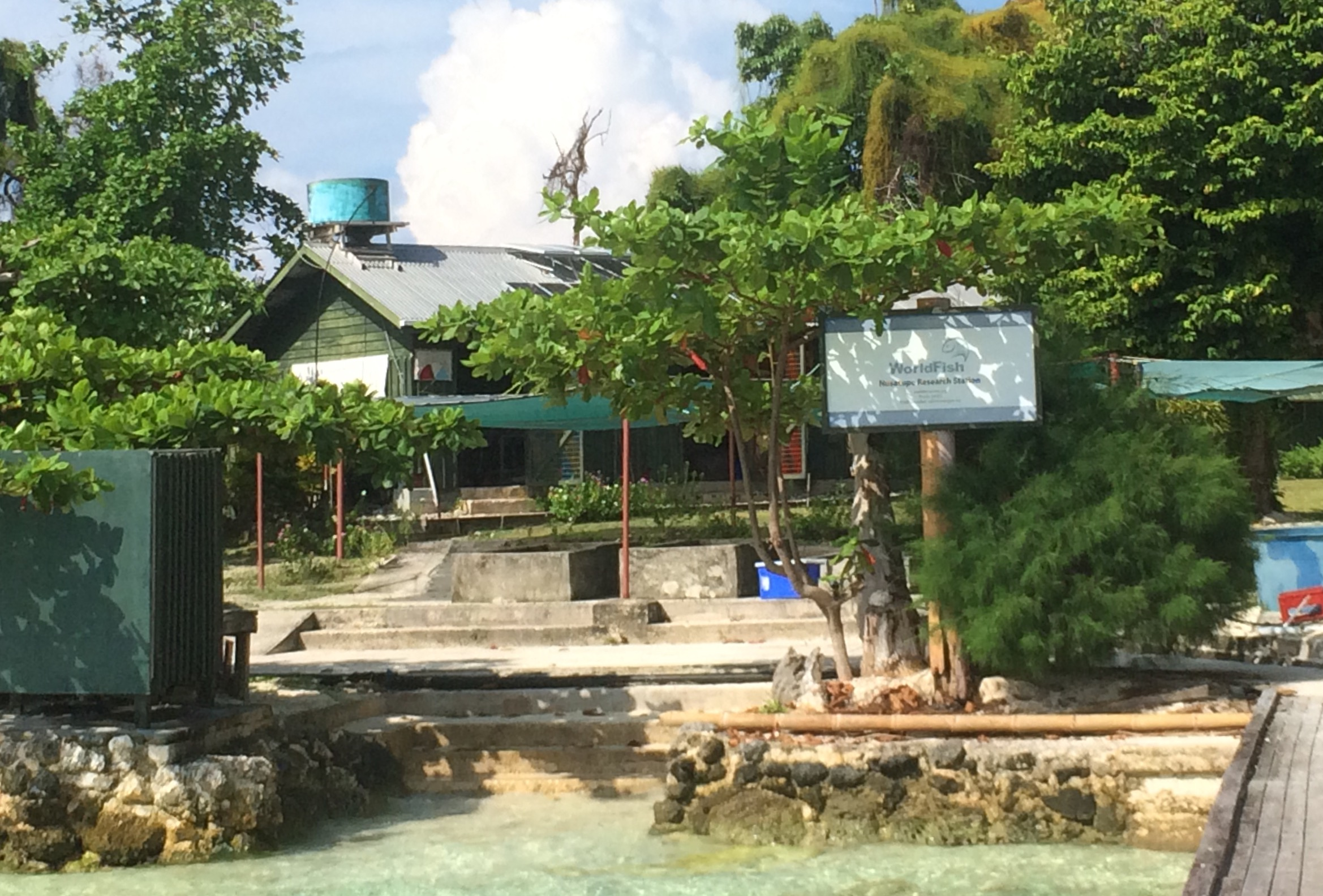 Nusa Tupe research station boosts sustainability in the Solomons' seas