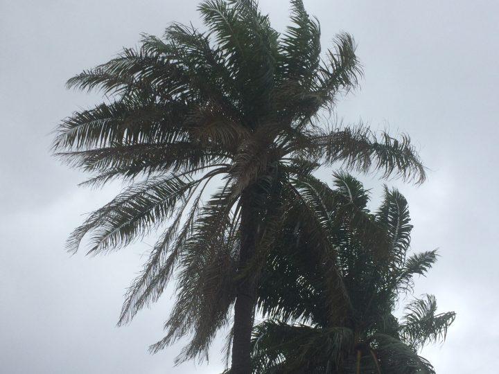 SIBC Podcasts: Famili blo Hana-Disaster strikes