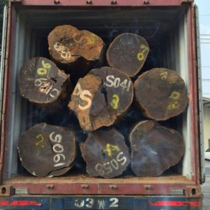 Fake Tubi export deregulation document